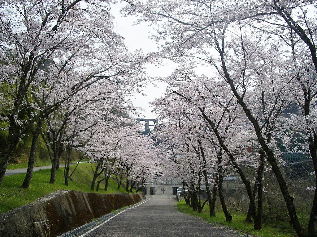 新丸山ダム発電所